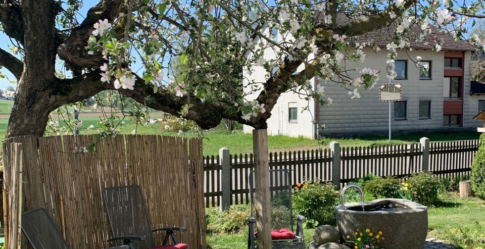 Sitzecke unter Apfelbaum