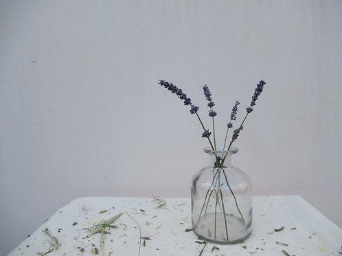 Apothecary bud vase