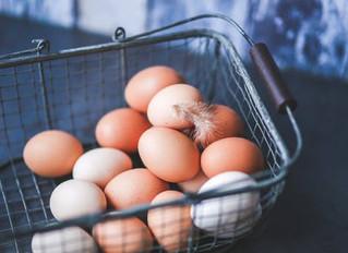 Lets Talk About Eggs....