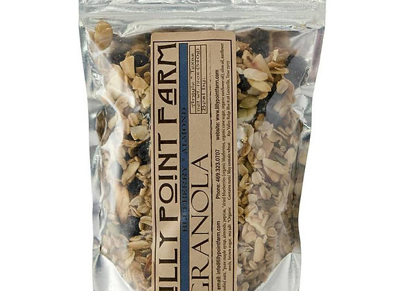 Blueberry Almond Granola- 12 oz.