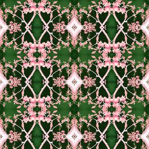 Stockholm lace pink