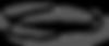 הולהבוסט לוגו בלבד.png