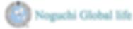 野口グローバルライフ株式会社,EIS,生体電流インピーダンス測定機