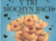 tri mochyn bach board book.jpg