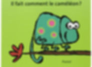Chameleon board book.jpg