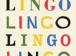 Lingo board book.jpg