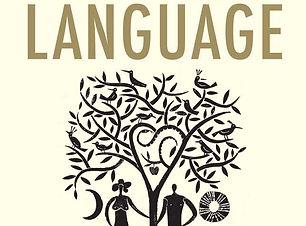 Little Book of Language book.jpg