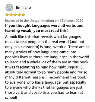 Multilingual is Normal book review.jpg