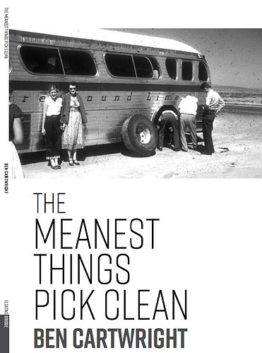 The Meanest Things Pick Clean (Poetry, Floating Bridge Press, 2017)
