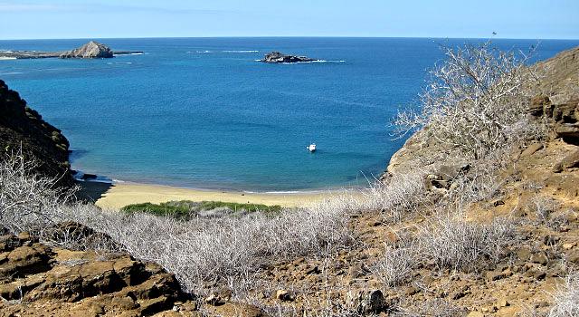 Punta Pitt