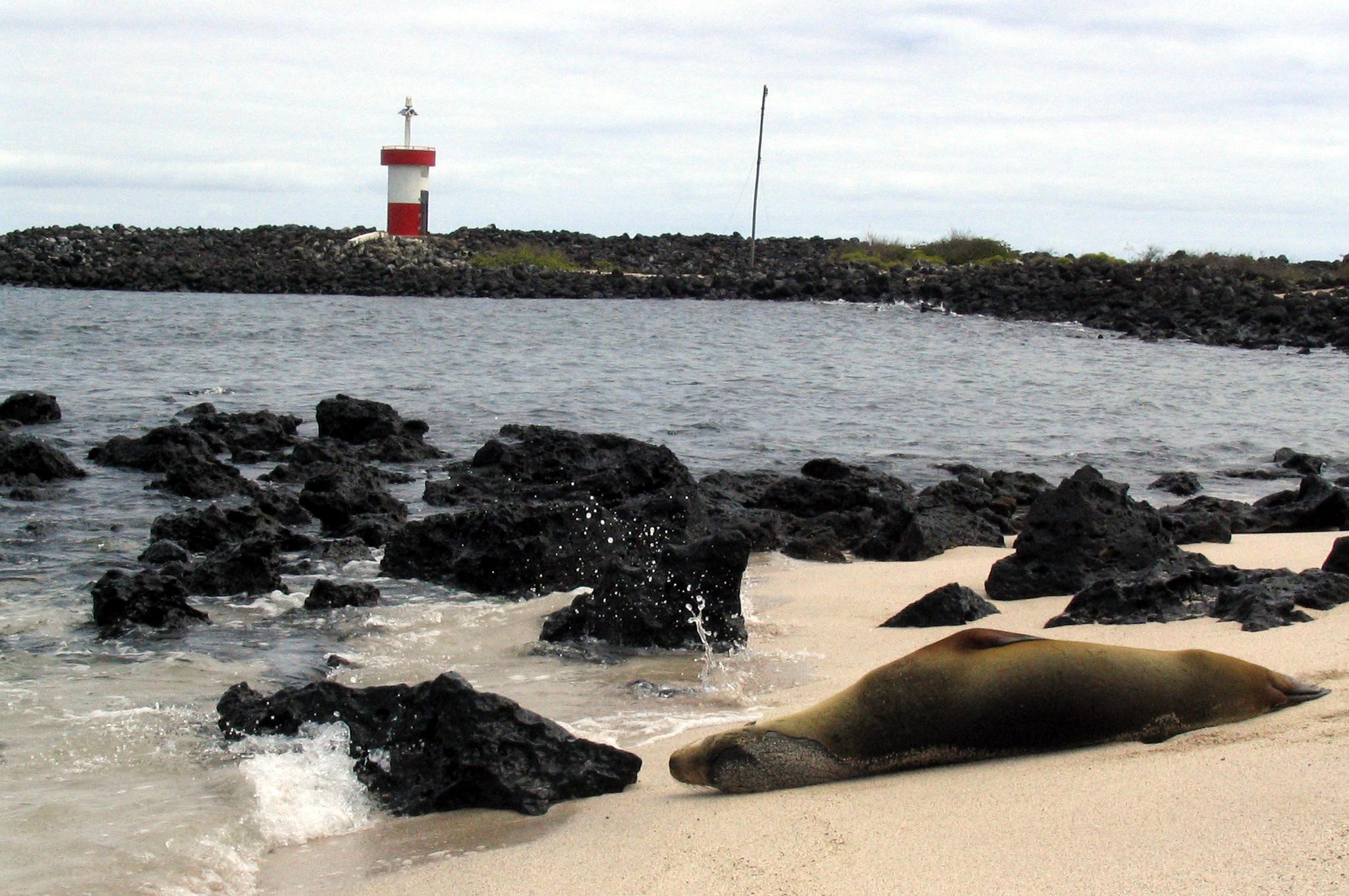 Punta Carola Beach