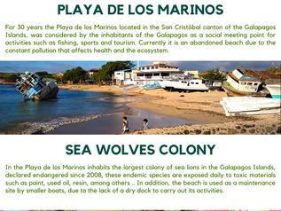 Case: Los Marinos Beach