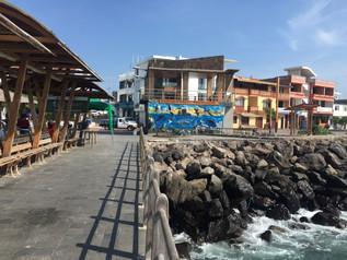 Erfahrungsbericht Galapagos, San Cristobal