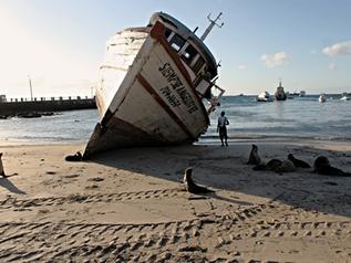 Galápagos FODA