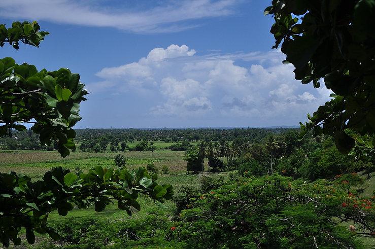 les Cayes1.jfif