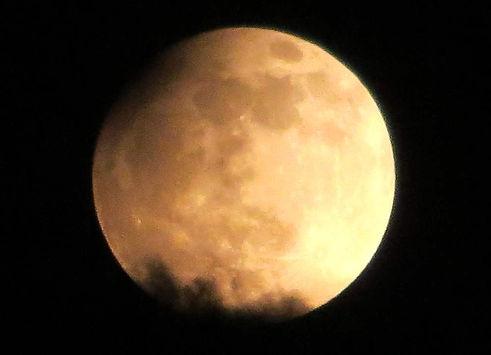 Profilfach Astronomie