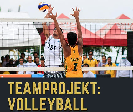 bild 1 - teamprojekt-volleyball.jpg