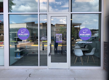 PURRFECT: MEOWS CORNER CAT CAFE COMING TO STERLING