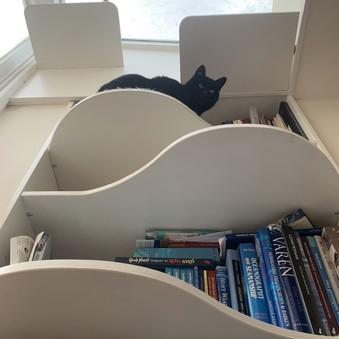 inbouw boekenkast.jpg