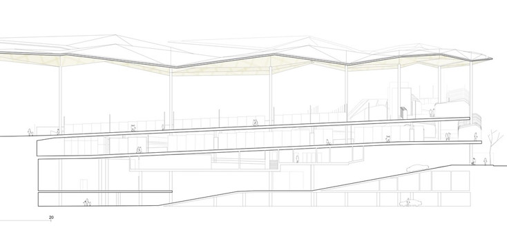 section_(1).jpg