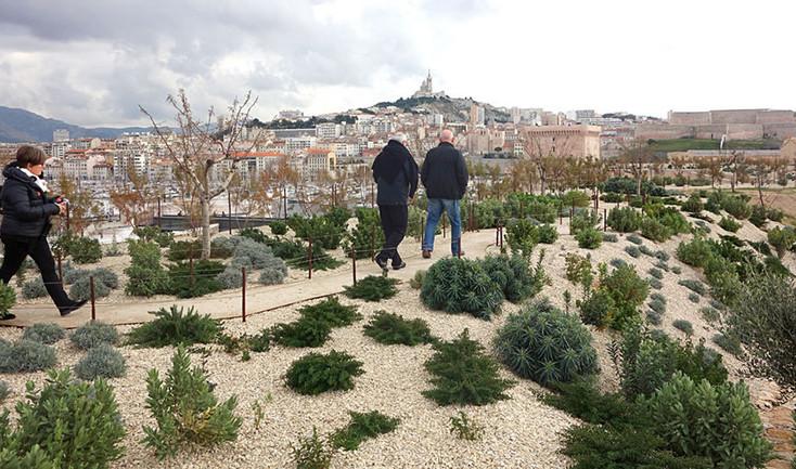 aps-real-Marseille-5.jpg