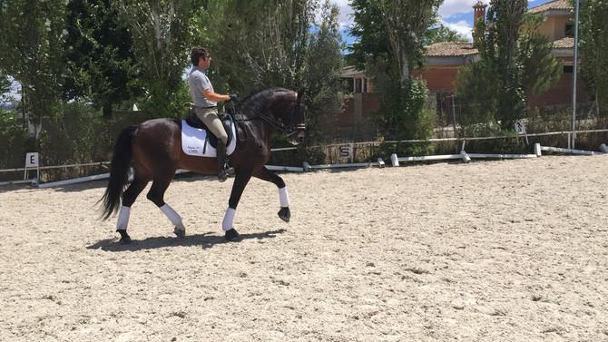 New video of Hebreo-Alhamilla, riding Claudio Castilla