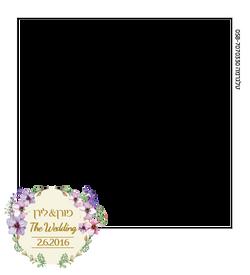 polaroid_020616_ml