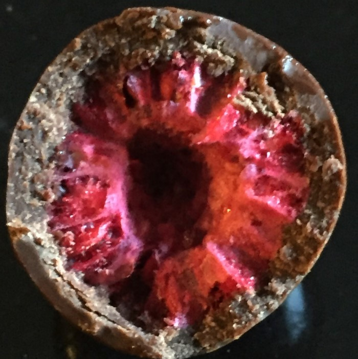 Costco Tru Fru Real Raspberries Dark Chocolate
