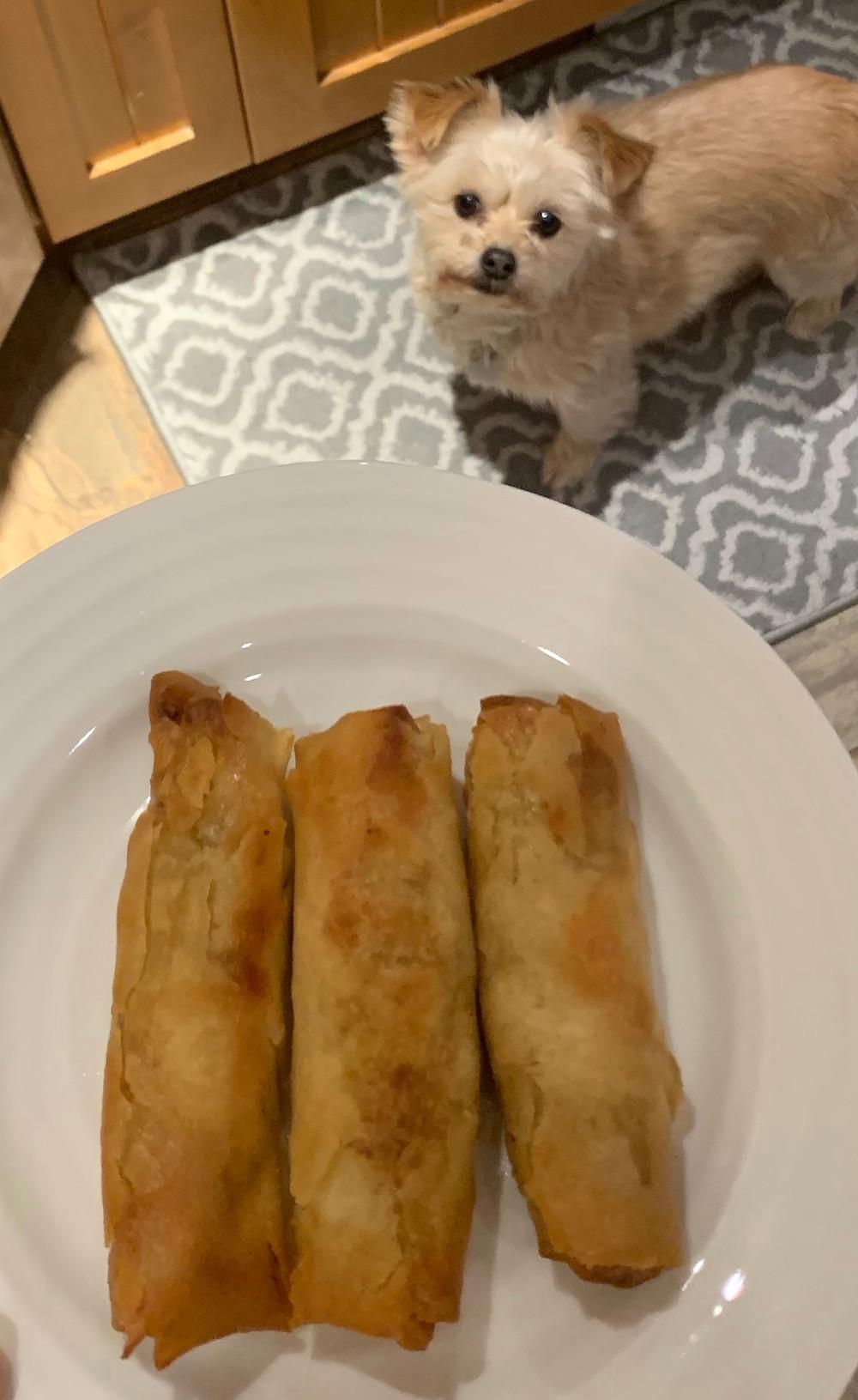 Cooked Costco Summ! Crispy Vegetable Spring Rolls