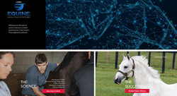 Equine Analysis Systems