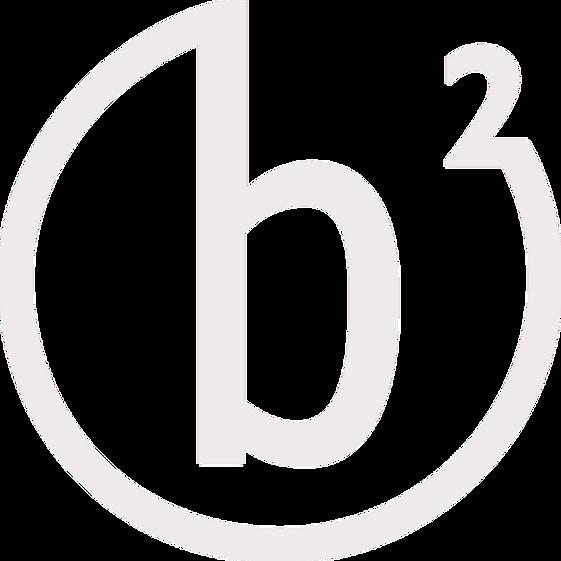 Joerg J. Berchtold // Berchtold Projekte Logo blass
