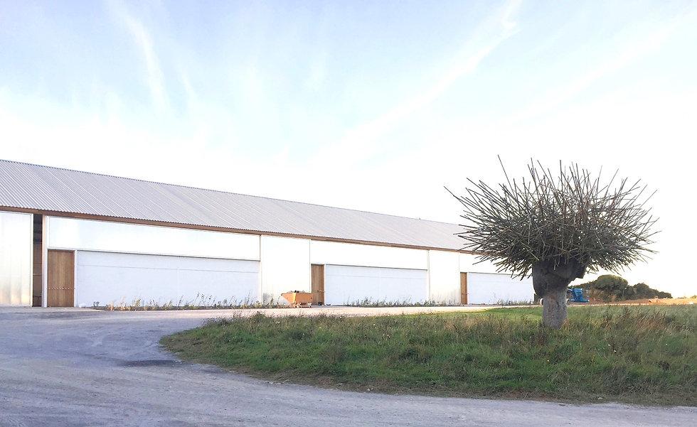 Jospeh Walsh Studio