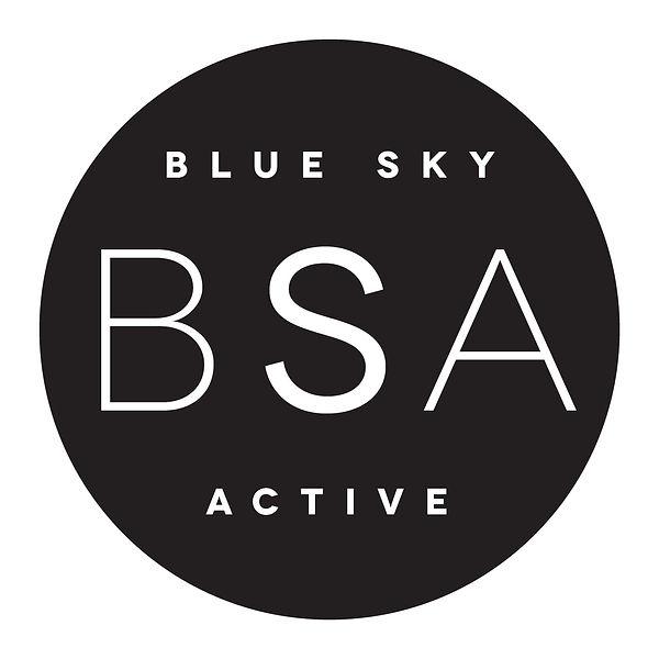 BSF Logo V2-03.jpg
