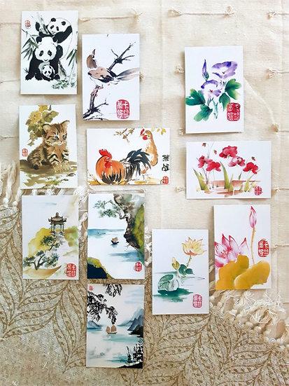 Pack cartes postales (à composer)