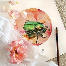 Aquarelle Scrarabée - Christine Magré art vibratoire
