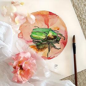 Aquarelle scarabée - Christine Magré art vibratoire