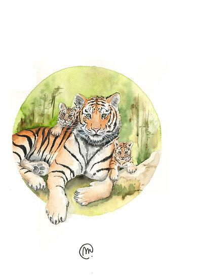 La Tigresse et sesTigreaux