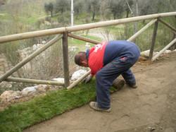 Messa in opera erba naturale