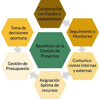 Proyectos Beneficios.png