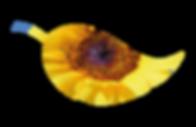 Sunflower within leaf brand image