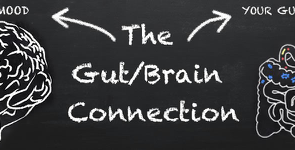 The Gut/Brain Connection