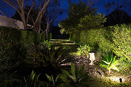 Garden lights Sunshine Coast