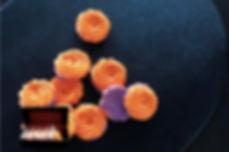 ローズ型メレンゲクッキー.jpg