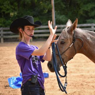 Open Horse Show - Sept 2018-9.jpg