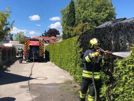 B3-Wohnhausbrand war Heckenbrand