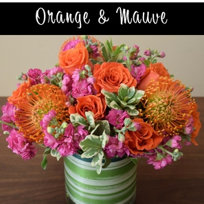 Orange and Mauve Deluxe.png