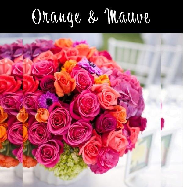 Orange and Mauve Premium.png