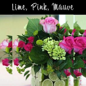 Lime, Pink, Mauve Premium.png