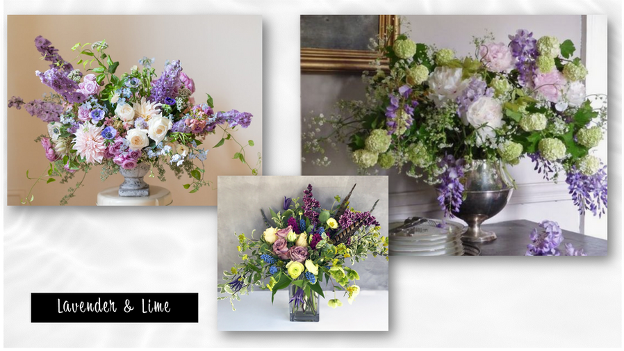 Lavender and Lime Collection.png