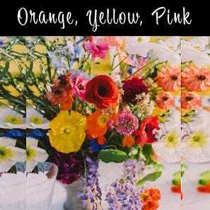 Orange, Yellow, Pink Deluxe.png